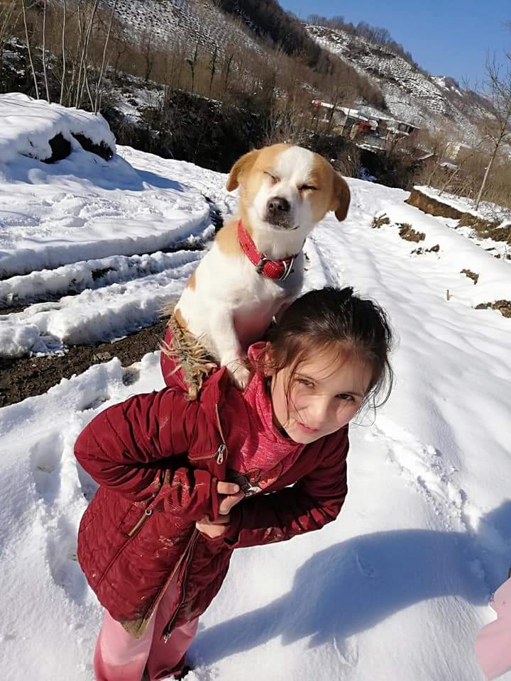 O fetiță de 9 ani și-a cărat câinele în spate, prin zăpadă, pentru a ajunge cu el la veterinar. A mers așa doi kilometri, iar povestea sa a impresionat o lume întreagă