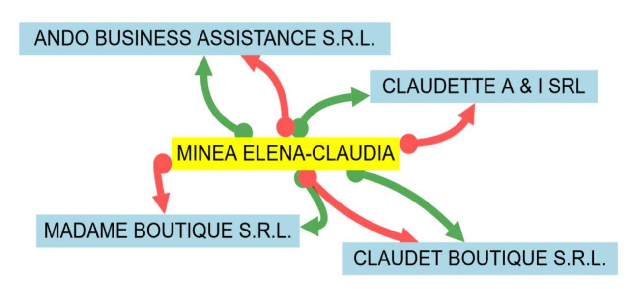 Cele patru firme administrate de Elena Claudia Minea